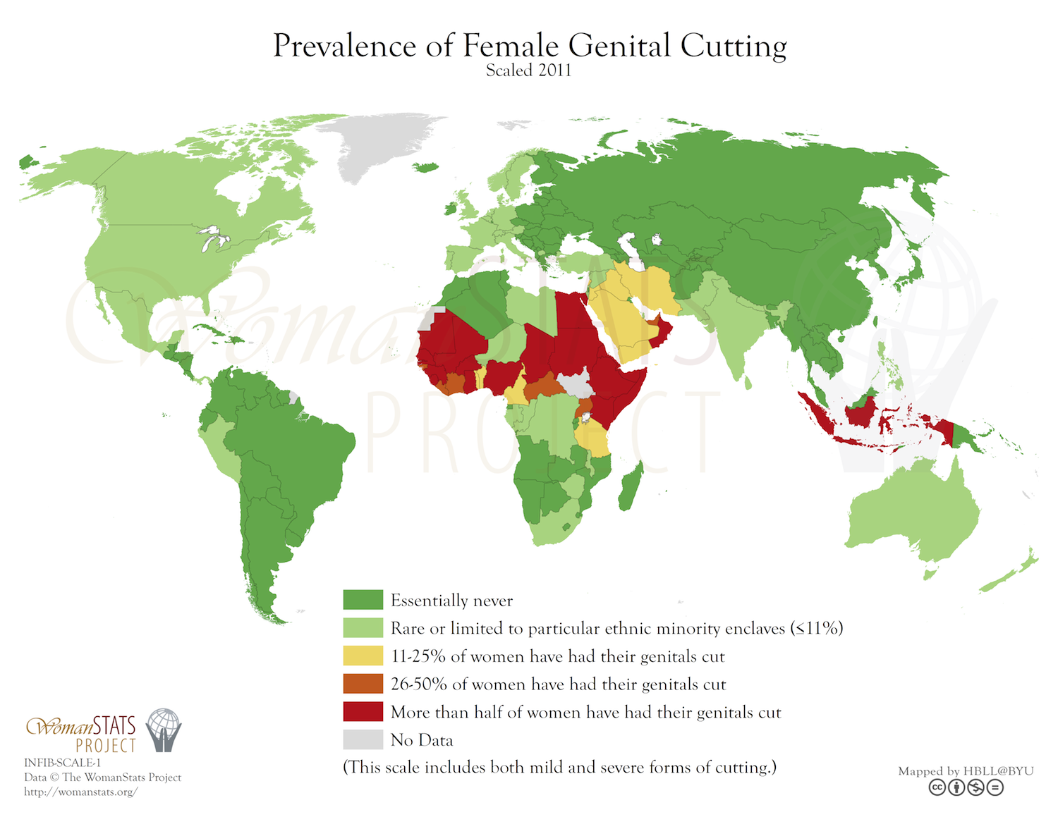 female genital mutilation in africa essay