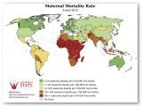 Estadística de mortalidad materna